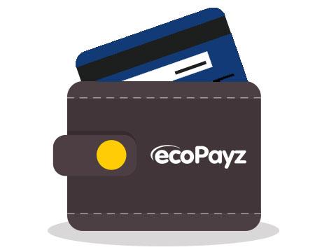 ecoPayz- weenax