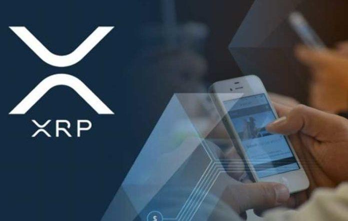 Криптовалюта XRP от Ripple: чем отличается от остальных