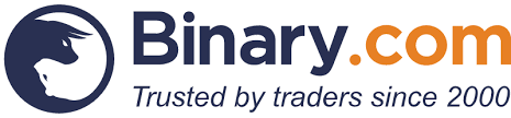 binary logo